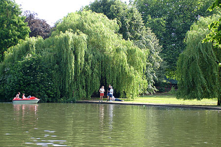 Leicester Abbey Park - A Green City